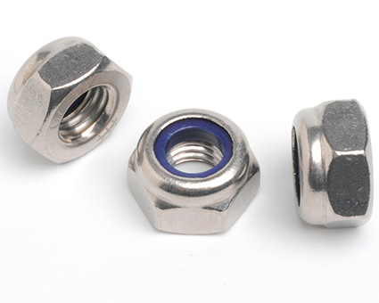 Stainless Steel Nylon Insert Nuts