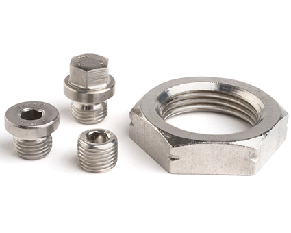 Stainless Steel Pipe Plugs